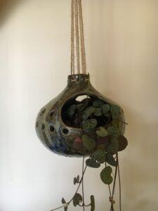 planten hanger gedraaid opde draaischijf
